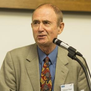 Professor Roger King (Chair)